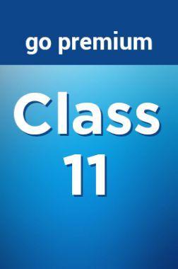 Class 11 Go Premium