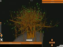 Modification Of Root Experiments