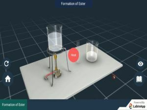 Carbon And Its Compounds - Formation Of Ester Experiments