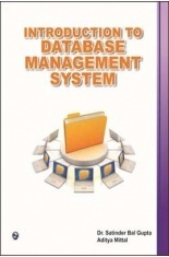 Download Introduction To Database Management System by