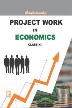 Comprehensive Project Work In Economics For Class-XI