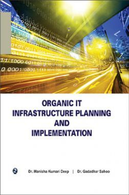 Organic It Infrastructure Planning And Implementation