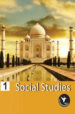 Humming Bird Social Study-1