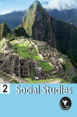 Humming Bird Social Study-2
