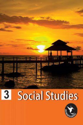 Humming Bird Social Study-3