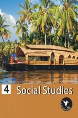 Humming Bird Social Study-4