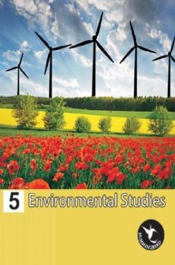 Holy Faith Humming Bird Environmental Studies-5