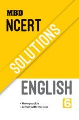 Get Class 6 English Book from Top Publishers of India