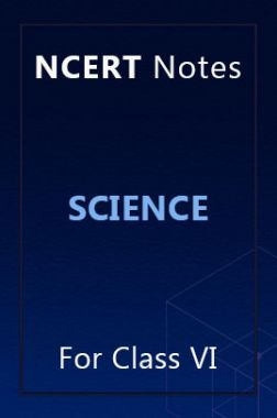 NCERT Notes Science For Class VI