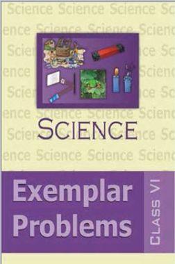 NCERT Science Examplar Problems For Class VI