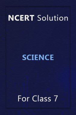 NCERT Solution For Class 7 Science