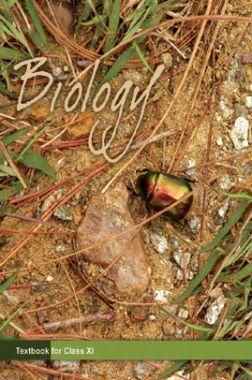 NCERT BiologyTextbook For Class XI