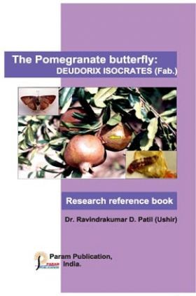 The Pomegranate Butterfly: Deudorix Isocrates (Fab.)