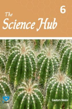 The Science Hub For Class VI