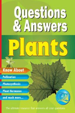 Questions & Answers Plants