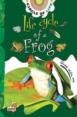 Circle of Life : Life Cycle of a Frog
