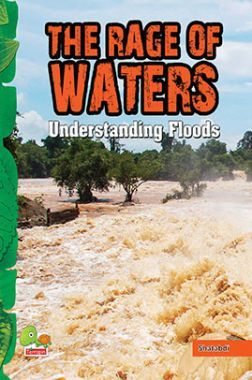 The Rage of Waters : Understanding Floods