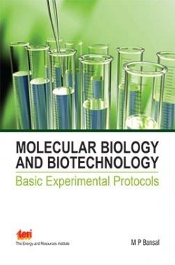 Molecular Biology and Biotechnology : Basic Experimental Protocols