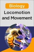 Biology - Locomotion and Movement
