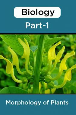 Biology-Morphology of Plants Paper-1