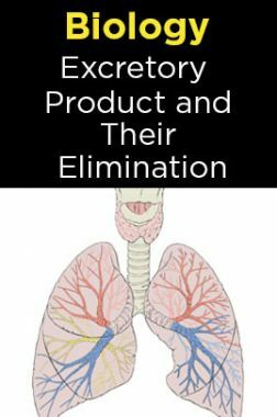 Biology-Excretory Products and Their Elimination