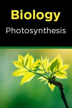 Biology-Photosynthesis