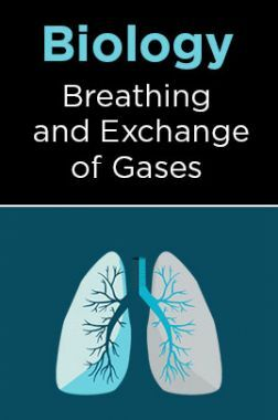 Biology-Breathing and Exchange of Gases