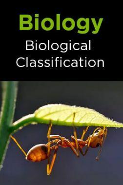 Biology-Biological Classification