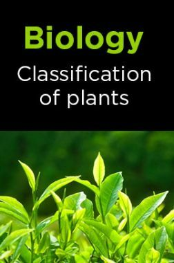 Biology-Classification of plants