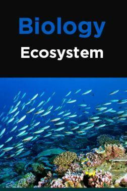 Biology-Ecosystem