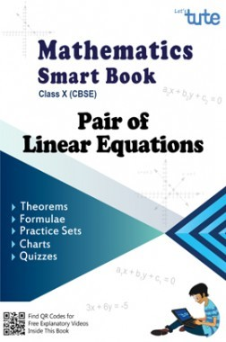 Mathematics Smart Book Pair Of Linear Equations For Class X (CBSE)