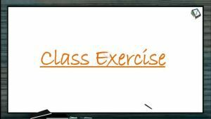 Animal Kingdom - Class Exercise (Session 1)