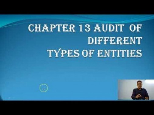 Audit And Assurance - Audit Of Different Types Of Entities Chapter-XIII Part I Video by Revantasuntech