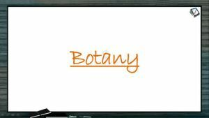 Biological Classification - Beneficial Activities Of Bacteria Part 1 (Session 3)