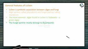 Biological Classification - Lichen Characteristics (Session 10)