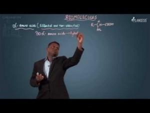 Biomolecules & Polymers - Amino Acids-II Video By Plancess