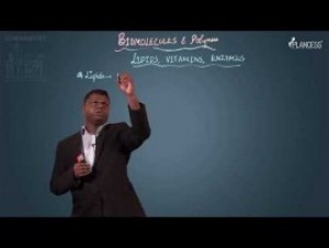 Biomolecules & Polymers - Lipids - Vitamins & Enzymes Video By Plancess