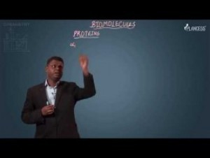Biomolecules & Polymers - Proteins Video By Plancess