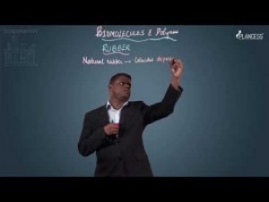 Biomolecules & Polymers - Rubber Polymers Video By Plancess