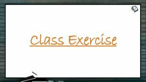 Breathing And Exchange of Gases - Class Exercise (Session 1)