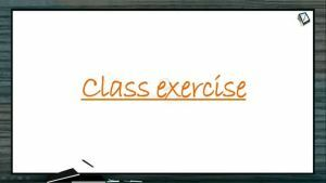 Breathing And Exchange of Gases - Class Exercise (Session 3)