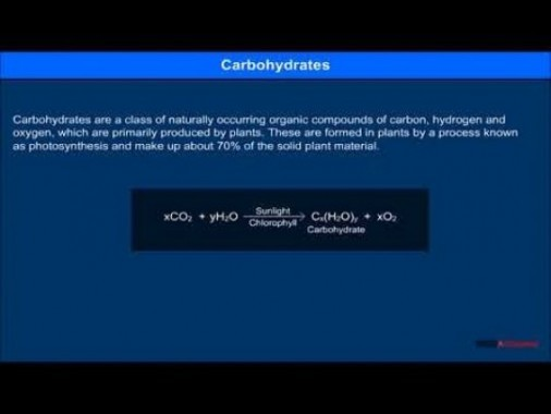 Class 12 Chemistry - Carbohydrates Video by MBD Publishers
