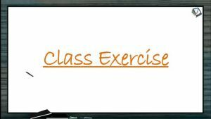 Cell Cycle And Cell Division - Class Exercise (Session 1)