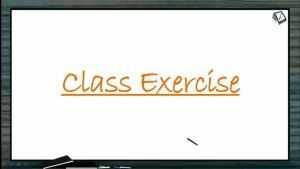 Cell Cycle And Cell Division - Class Exercise (Session 2)