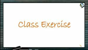 Centre of Mass - Class Exercise (Session 3)