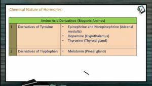 Chemical Coordination - Chemical Nature Of Hormones (Session 1)