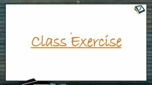 Chemical Equilibrium - Class Exercise (Session 1)