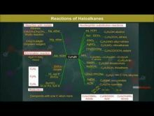 Class 12 Chemistry - Chemical Reactions Video by MBD Publishers