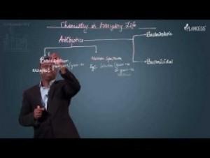 Chemistry In Everyday Life - Antibiotics Video By Plancess