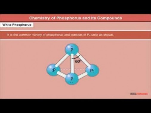 Class 12 Chemistry - Chemistry Of Phosphorus And Its Compounds Video by MBD Publishers